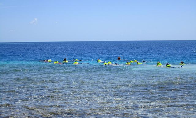 barrier-reef-snorkel-starfish-private-BEG6-mosaic